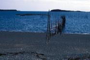 Jasper Beach (Figure 7)