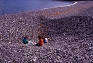 Jasper Beach (Figure 8)