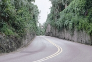 Road cut on Palm Beach Island south of the golf course.
