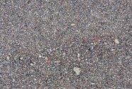 Figure-13.-Black-Sand-Close-up