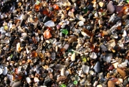 Glass Beach from Ft. Bragg, Mendocino County, California
