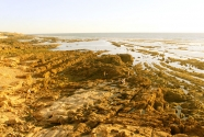saf-eroded-coast.jpg