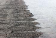 Figure-10-Beach-cusps-on-Eastport-Beach