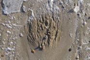 Figure-2-sand-volcanos