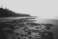 Santa Barbara Island, Columbia.
