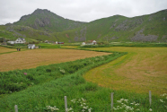 Figure-15-Farms-across-the-road-from-Haukland-Beach