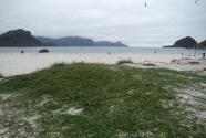 Figure-4-Dune-grasses-Haukland-Beach-Norway
