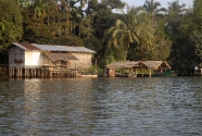 Life on the Banks of the  sand dredged Tatai River