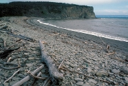 Cape Enrage, New Brunswick, Canada. This is a classic.