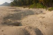 ngapali-beach-mined-holes