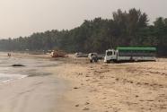 trucks-on-beach