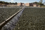 Improve Wastewater Treatment Systems.