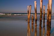 Wooden poles, St Clair Beach.