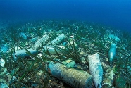 Seabed-pollution