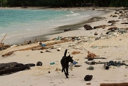 andaman-beach