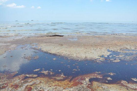PSDS: Lousiana Coast