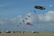 Romo beach, Kite festival