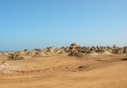 sand-from-surf-zone-(wet)-Morocco