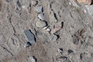 sand and gravel on the south Sermermiut Beach