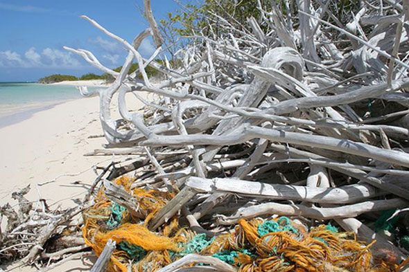 Fishing debris on beach
