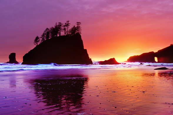 Washington Coast; By Dan Merkel