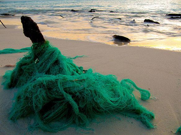 marine debris net