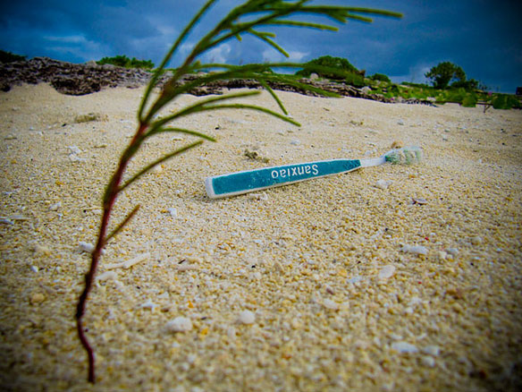 marine debris plastic pollution