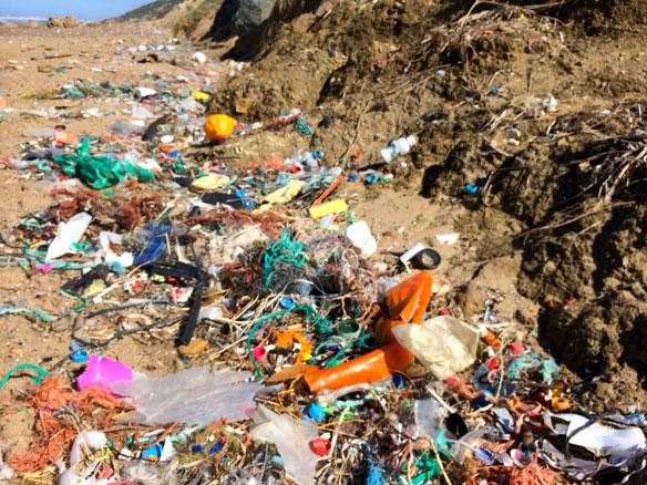 UN Declares War on Ocean Plastic