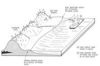Shoreline Engineering
