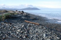 Elwha Beach, WA; By Robert Young & Adam Griffith