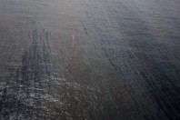 Gulf oil spill: real disaster beneath the surface