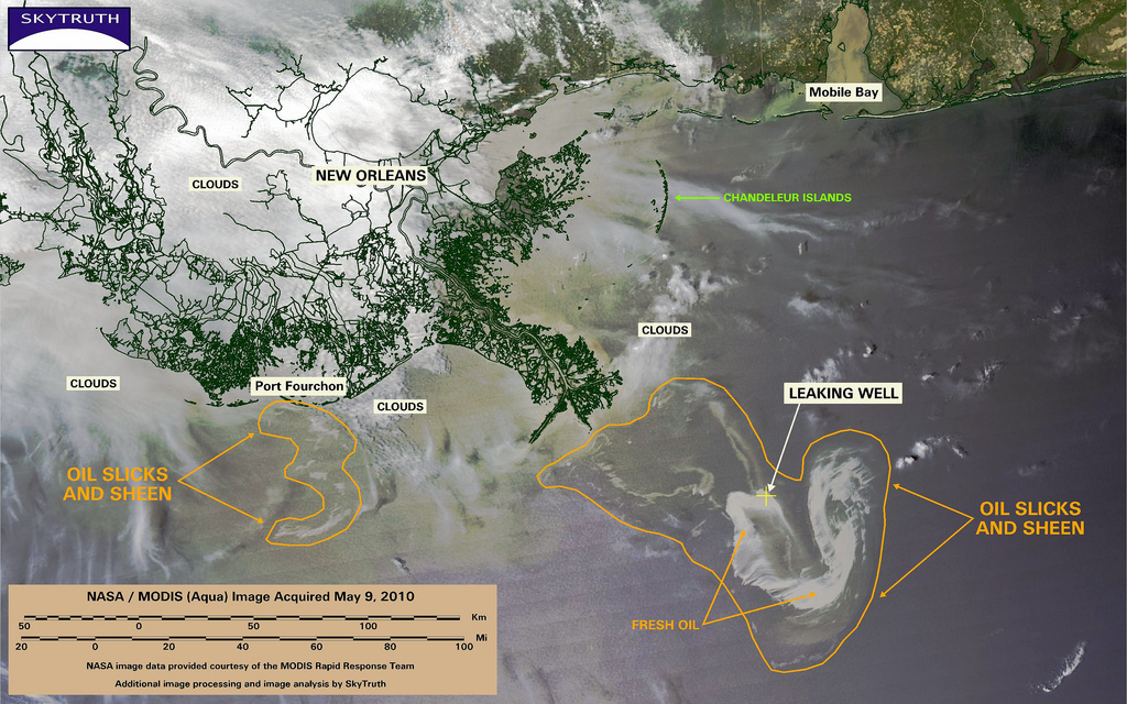 Gulf of Mexico Oil Spill and Coastal Resilience