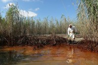 BP Ordered to Use Less Toxic Chemicals in Oil Cleanup