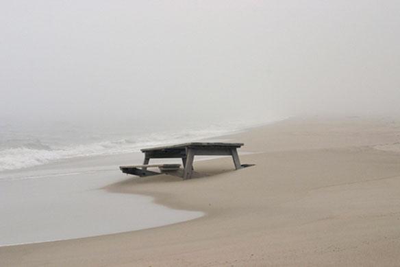 Mired, East Long Island; By Dalton Portella