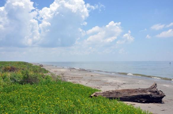 Isle Grand Terre, Louisiana