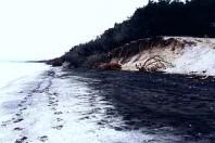 Mining 'eating' dunes at Northland refuge