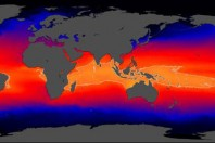 Indian Ocean Sea Level Rise Threatens Millions