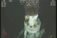 BP: Failed blowout preventer removed from well