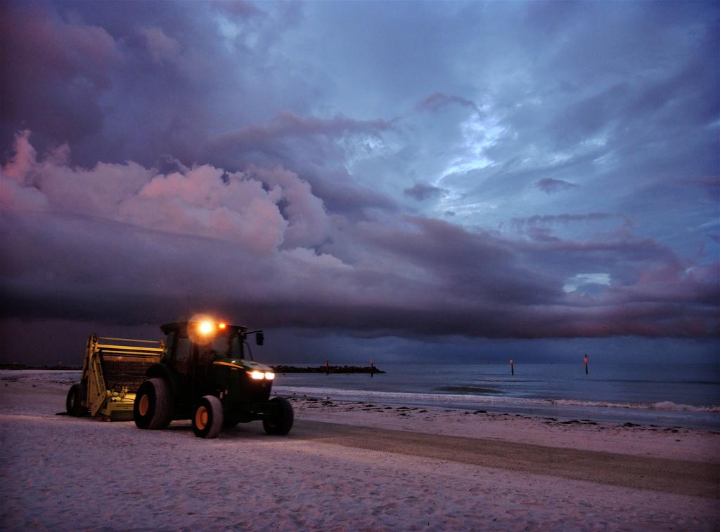 Sand Sharks Scour Gulf Beaches: Mixed Feelings