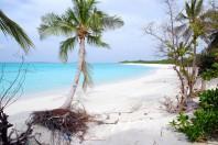 Solar Power in the Maldives
