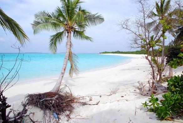 Maldives-erosion