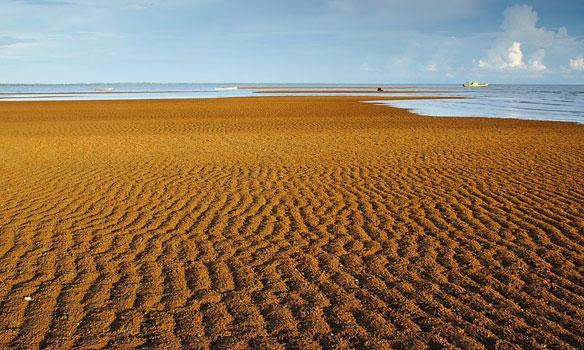 Sei Jawi Beach Indonesia