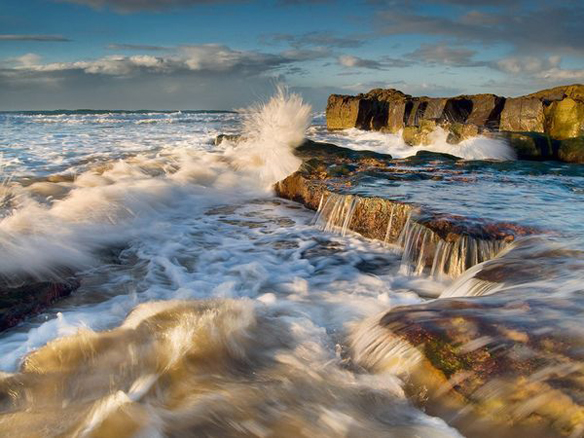 Water Flows and Coastal Ecosytems