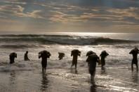 Sea Turtle Egg Poaching Legalized in Costa Rica: The Debate