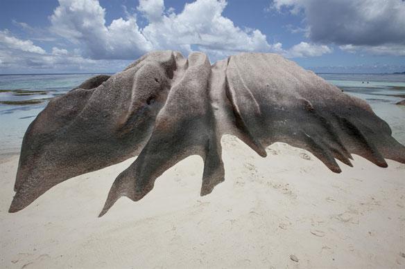 Coastal Erosion In The Seychelles Coastal Care