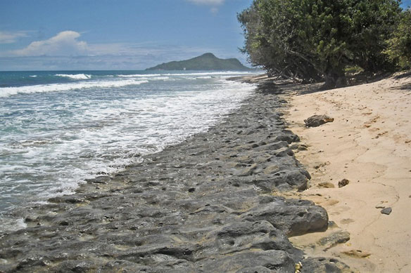 seychelles-stone-waterline