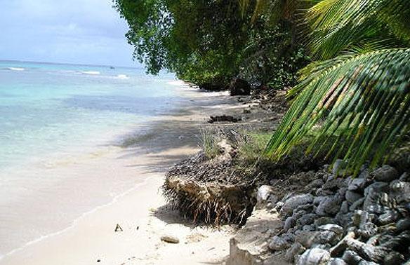 Last Chance Beach, Battling Erosion in Barbados