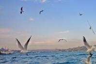 Turkey to build huge waterway to bypass Bosphorus