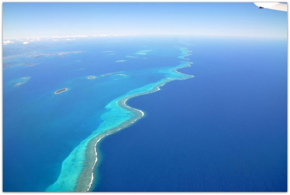 reef-new-caledonia
