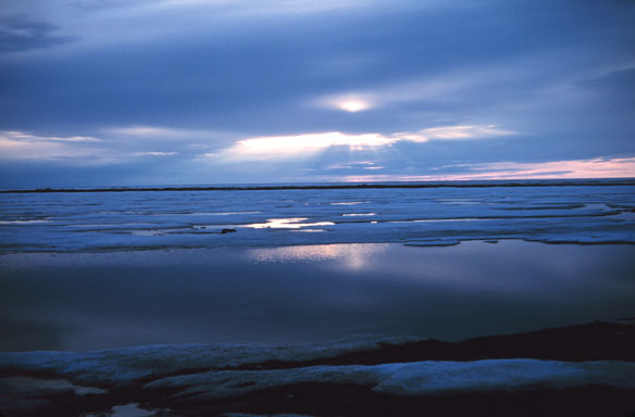 Shell to submit Arctic offshore drilling plan
